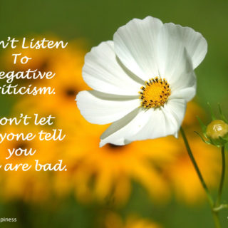 Don't listen to negative criticism (Article)