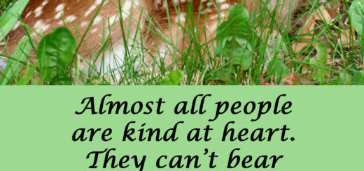 Almost all people are kind at heart