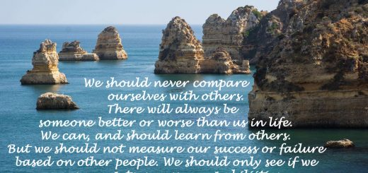 No comparison with others