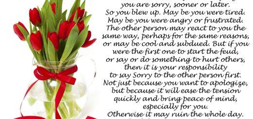Say Sorry Asap